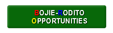 Bojie-Rodito Opportunities